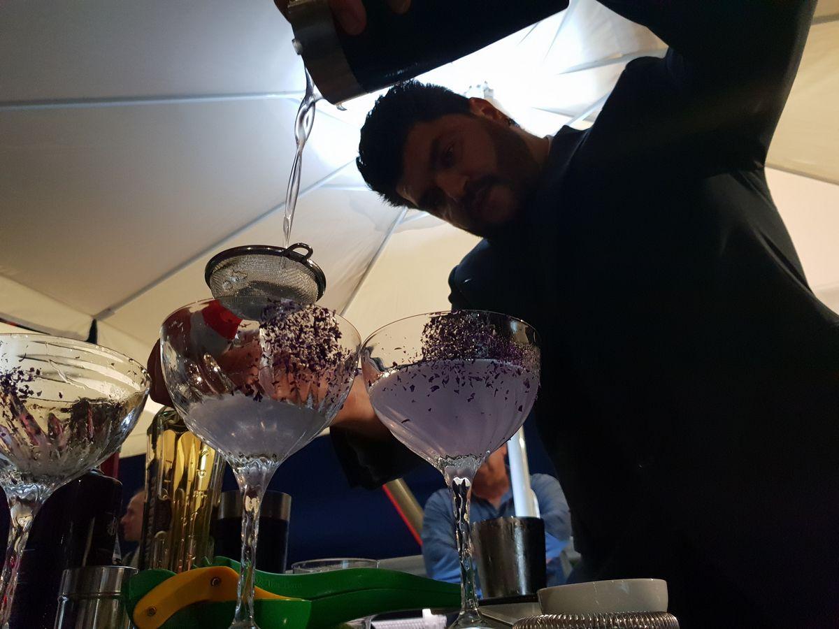 Sparkling tour Lambrusco Wine Festival